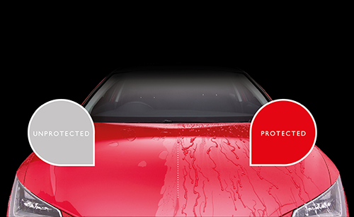 paint-protection-image.png